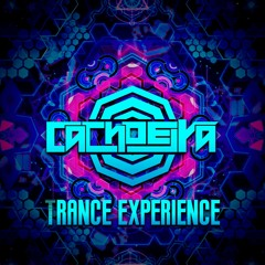 Trance Experience