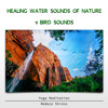 Healing Water Sounds
