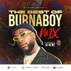 THE BEST OF BURNABOY MIX (2020)