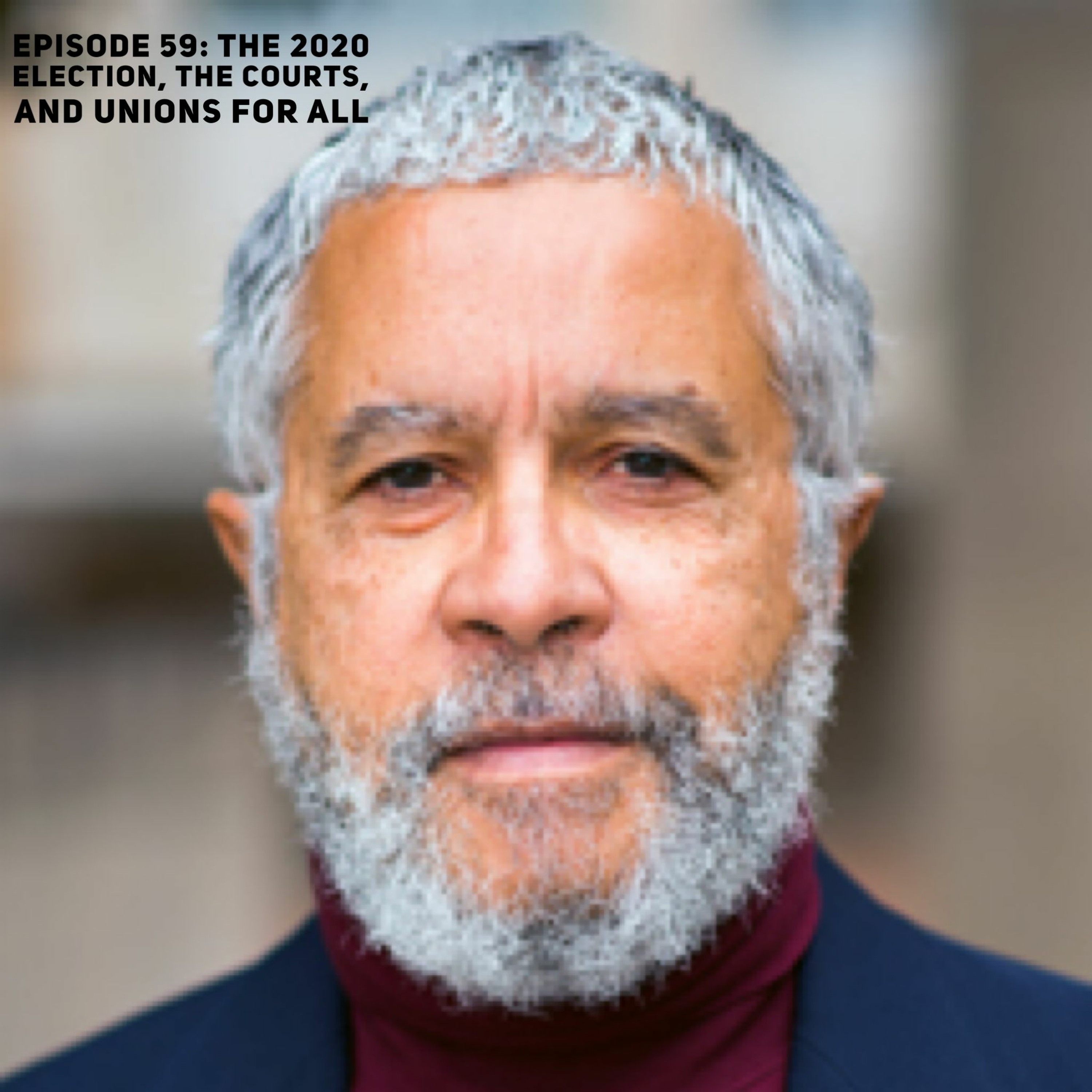 Episode 59: The 2020 Election, The Courts, And Unions For All with Prof. Harold McDougall