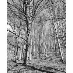 Hattori Hanzō - Winter Landscapes LP - OUT NOW (Link in Bio)