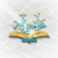 لا يستوون - علمتني آية - الشيخ عمرو الشرقاوي
