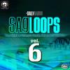 Loop 3 (80 BPM)