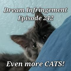 Dream Infringement 242