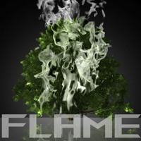 Flame (feat. CEO & Monarch)