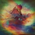 Mr. Gnome Psychonaut Artwork