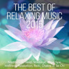 Tai Chi Music (Sea Waves and Calm Clarinet)