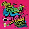 Amor A Primera Vista (feat. Horacio Palencia) Portada del disco
