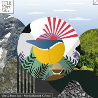 Vite & Hole Box - Marea (Urmet K Remix)