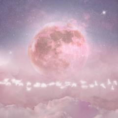 [2021.4.16. 음원사이트 발매] 칠석(七夕)(feat. Troy💙)