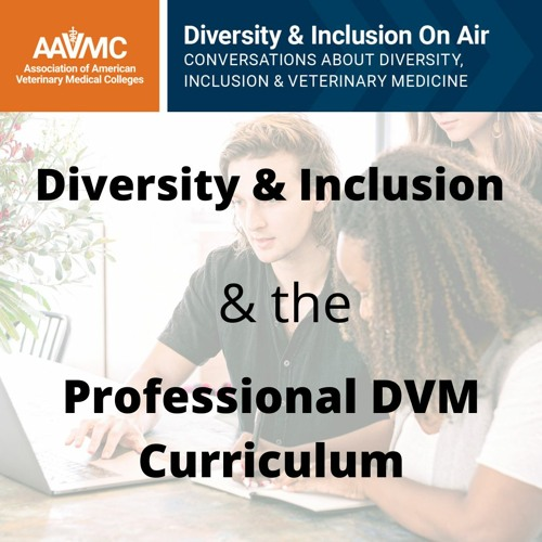 68: Diversity & Inclusion in the DVM Curriculum