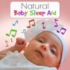 The Best Baby Sleep Solution