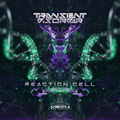 Transient Disorder - Reaction Cell ( Sonoora Records )