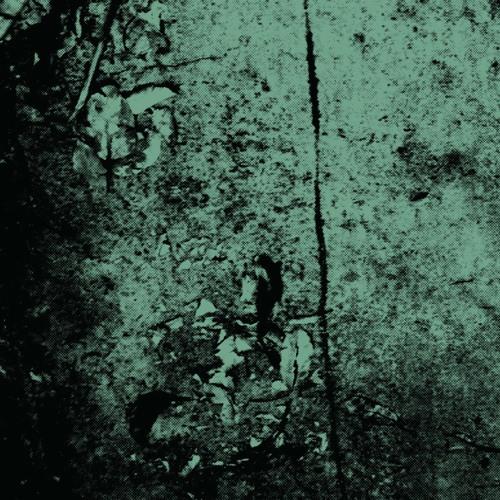 Jackson-Pratt - Skullcutter Herringbone (excerpt)