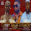 LATEST NAIJA AFROBEAT 2020 - 2021 PARTY MIX DJ TOPS FT DAVIDO , OMAH LAY , ZLATAN, NAIRA MARLEY