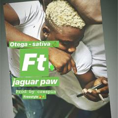 Sativa (feat. Jaguar Paw)