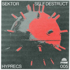HYPRECS 005: Self Destruct (Sektor) Promo Mix