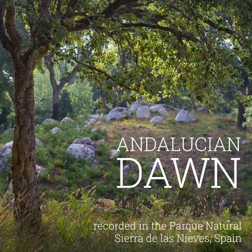 Album - Andalucian Dawn