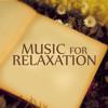 Listening Skills (Piano Ocean Waves)