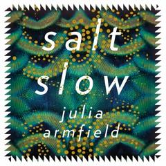 Salt Slow by Julia Armfield - The Great Awake