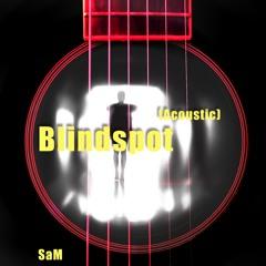 Blindspot (Acoustic)