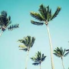 Palms Sundae v2