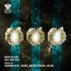 David Sellers - Last Hope (Matias Stradini Remix)
