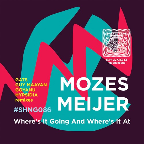 Mozes Meijer - Where's It Going And Where's It At (Goyanu Edit)