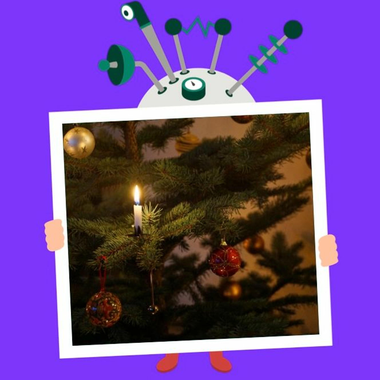 Afsnit 50: Hvorfor bruger man juletræer til jul?