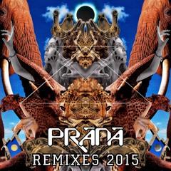 PRANA - Alien Pets (Filterias Kami - No - Michi Remix)2015