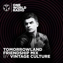 Tomorrowland Friendship Mix - Vintage Culture