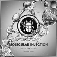 Devid Dega, Luca B - Molecular Injection (Hollen Remix)