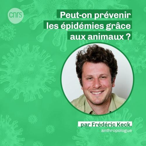 Peut-on prévenir les épidémies grâce aux animaux ? par Frédéric Keck