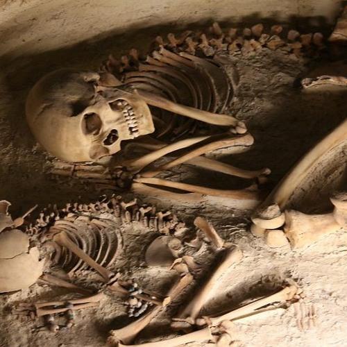 Osteoarcheologie