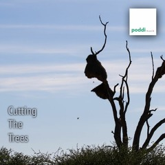 Cutting The Trees