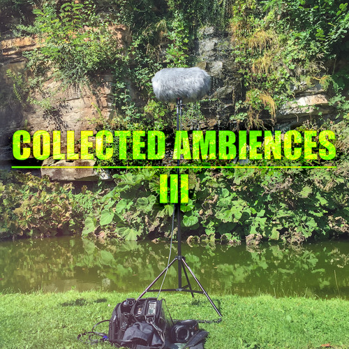 CA3 Ambience Backyard LightRain Birds DistantCars 1