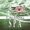 Spa Healing Water (Soft Music)