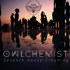 Seventh House Cleaning