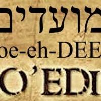 Parasha Emor 5781 Sermon - The Calling Of Holiness