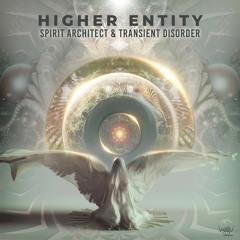 Spirit Architect & Transient Disorder - Higher Entity