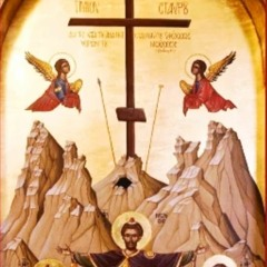 Homily for the Sunday Before the Exaltation of the Holy Cross-09-12-2021