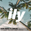 Surf Mesa ft. Emilee - ily (i love you baby)(Amice Remix)