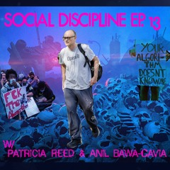 SD13 - w/ Patricia Reed & Anil Bawa-Cavia - Seize the Means of Complexity