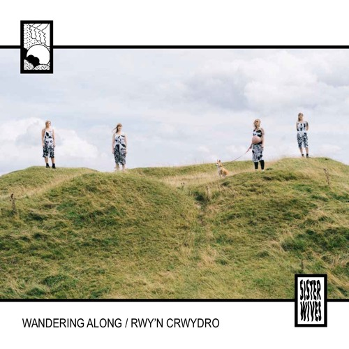 SISTER WIVES - Wandering Along / Rwy'n Crwydro (Radio Edit)