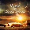 Sleep Waves 490