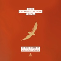 BCee, Charlotte Haining & Tempza - In The Moment (Monrroe Remix) - Spearhead Records