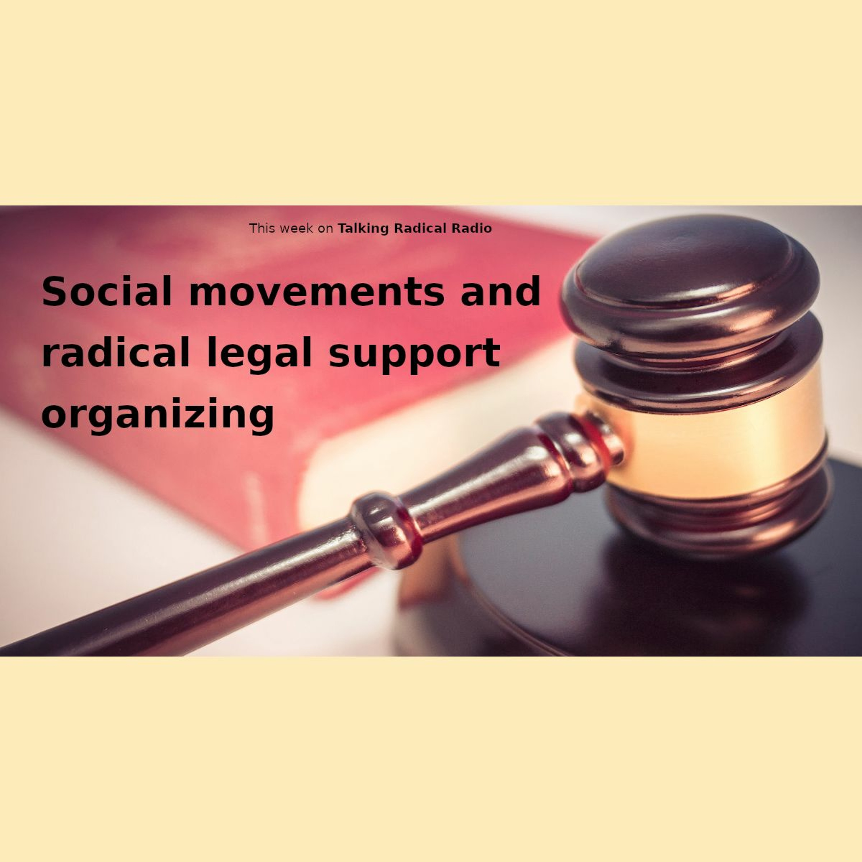 Social movements and radical legal support organizing