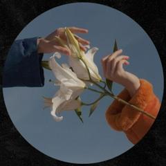 Luis Piñeiros - Miniserie (Gift Track)