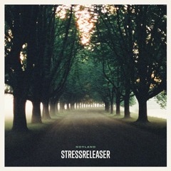 "Noyland - ""Stressreleaser"""