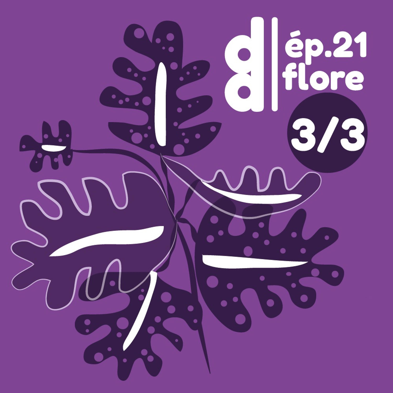 DESSIN DESSEIN // EP21 Flore - Partie 3 : le paysagisme avec Adélaïde Fiche